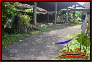 Investasi Properti, Tanah Murah Dijual di Tabanan TJTB400