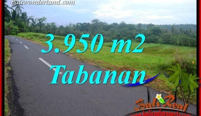 Dijual Murah Tanah di Tabanan Bali 39.5 Are di Tabanan Selemadeg