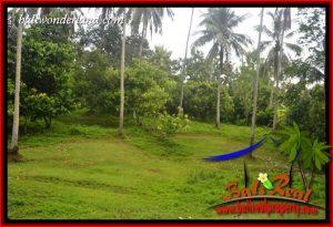 JUAL Murah Tanah di Tabanan Bali 132.5 Are View Kebun