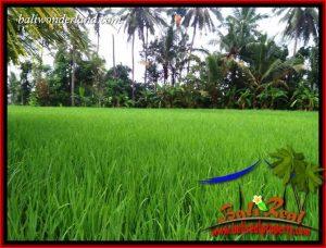 JUAL Tanah Murah di Tabanan 1,122 m2 di Tabanan Kerambitan