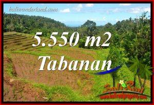 Tanah di Tabanan jual Murah 5,550 m2 View Laut dan Sawah