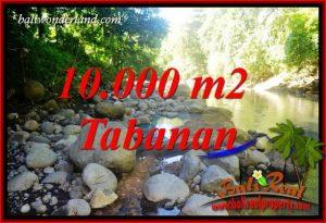Tanah Murah jual Tabanan 100 Are View Sawah dan Sungai