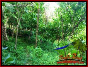 Investasi Property, jual Tanah di Tabanan Bali TJTB410