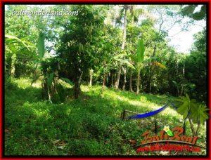 JUAL Tanah di Tabanan Bali 2,800 m2 View Kebun dan Sungai