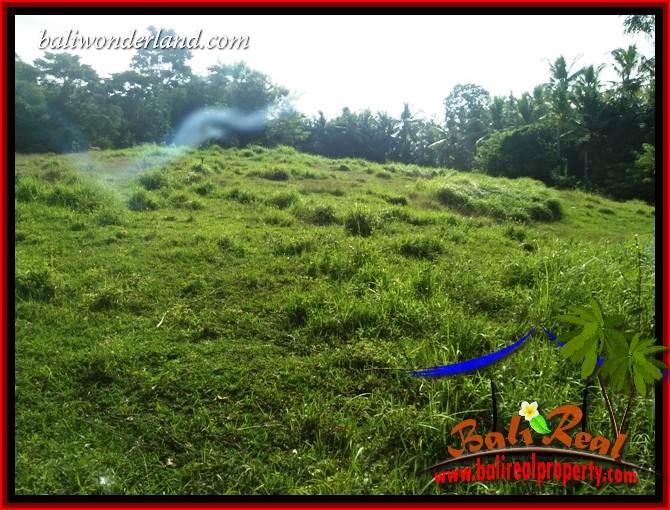 JUAL Murah Tanah di Tabanan 33 Are View Kebun dan Sungai
