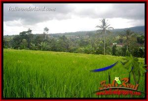 JUAL Murah Tanah di Tabanan 36 Are View Gunung dan Sawah