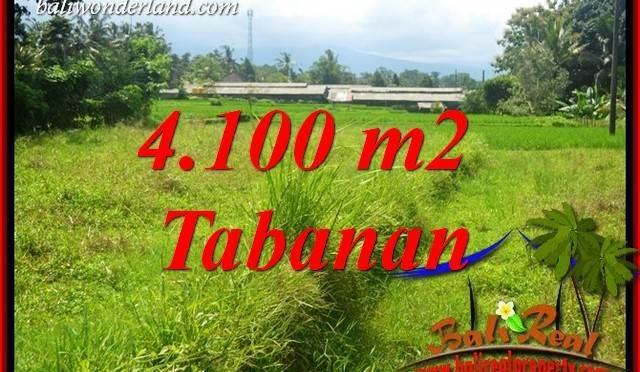 JUAL Tanah di Tabanan Bali Untuk Investasi TJTB417