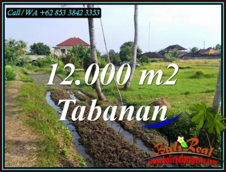 JUAL TANAH DI TABANAN BALI 12,000 m2 VIEW SAWAH DEKAT PANTAI