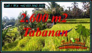 TANAH di TABANAN BALI DIJUAL MURAH Untuk INVESTASI TJTB499B