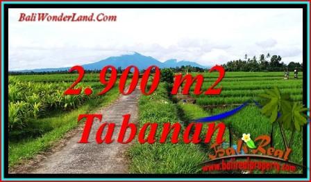TANAH MURAH JUAL TABANAN 29 Are VIEW SAWAH, GUNUNG DAN LAUT