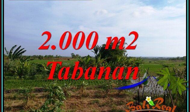 TANAH MURAH DIJUAL di TABANAN BALI 20 Are di KERAMBITAN TABANAN