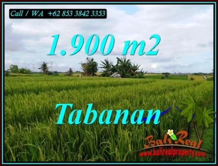TANAH di TABANAN BALI DIJUAL MURAH TJTB495
