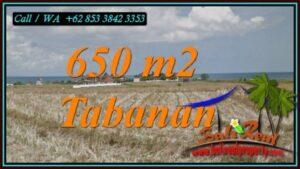 JUAL TANAH MURAH di TABANAN BALI 6.5 Are di SELEMADEG TABANAN