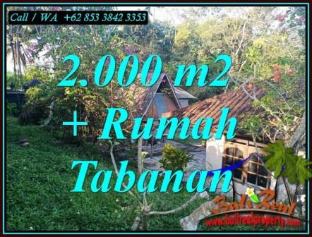 TANAH MURAH DI TABANAN, DIJUAL TANAH DI TABANAN Bali, tanah dijual di Bali, DIJUAL TANAH MURAH DI BALI, TANAH DIJUAL DI TABANAN, investasi property di Bali