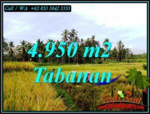 JUAL TANAH DI TABANAN BALI 4,950 m2 di MARGA TABANAN