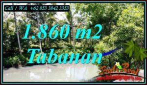 TANAH DIJUAL MURAH di TABANAN Untuk INVESTASI TJTB467