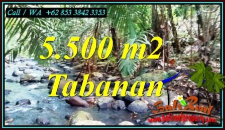 TANAH di TABANAN BALI DIJUAL MURAH TJTB470
