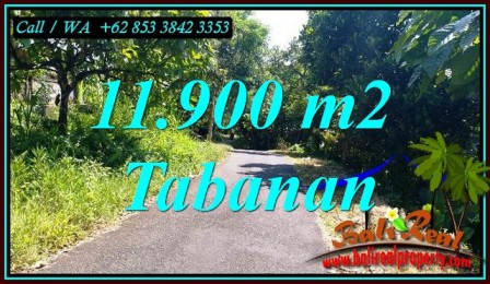 DIJUAL TANAH DI TABANAN 119 Are di SELEMADEG BARAT