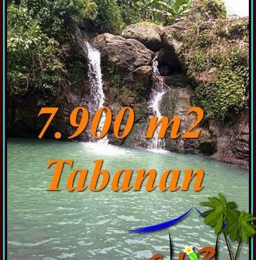 TANAH MURAH di TABANAN BALI DIJUAL TJTB479