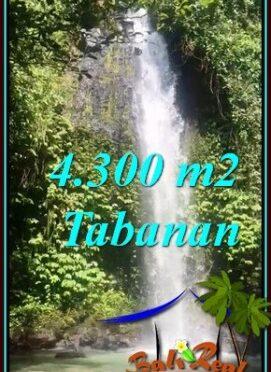 JUAL MURAH TANAH di TABANAN 43 Are SUNGAI DAN AIR TERJUN