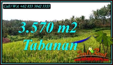 TANAH MURAH di TABANAN BALI TJTB482